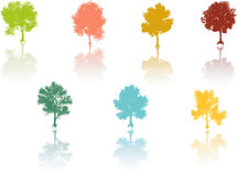 Colored tree reflection Vector. Seven Colored tree reflection Vector Stock Image