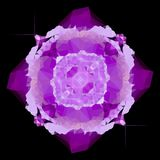 Colored ultra violet blotch on black background, violet rotate center polygonal blur effect. Colored ultra violet blotch on black background, violet rotate vector illustration