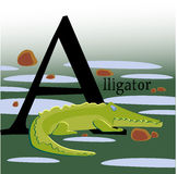 Colored Vector picture with an alligator Royalty Free Stock Photos