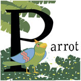 Colored Vector picture with a parrot Royalty Free Stock Image