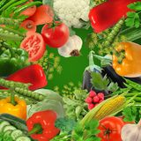 Colored  vegetable composition set  . Royalty Free Stock Photo