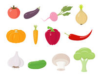 Colored Vegetables Icons Stock Image