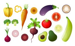 Colored vegetables set isolated on white background vector illustration