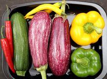 Colored vegetables. Royalty Free Stock Photo