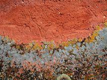 Colored wall wallpaper Stock Photography