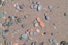 Colored wet pebbles on beach. Coastline Stock Images