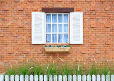 Colored windows on the wall background Stock Image