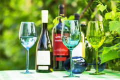 Colored wine glasses Royalty Free Stock Images