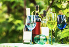 Colored wine glasses Royalty Free Stock Image