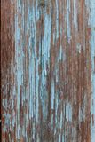 Colored wood background with peeling old paint.  Stock Photography