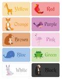 Coloree el vocabulario de los nombres en inglés para la educación primaria Imagen de archivo