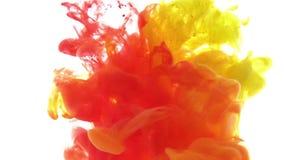 Coloree la tinta que reacciona en el agua que crea formaciones abstractas de la nube Tinta amarilla roja en el fondo blanco almacen de metraje de vídeo