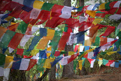 Coloreful modlitwy Buddyjskie flaga Obraz Royalty Free