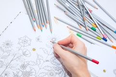 Colorer - antistress with colored pencils.Girl paints a coloring book for adults with crayons. Girl paints a coloring book for adults with crayons. colorer Stock Image