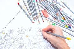 Colorer - antistress mit farbigen Bleistiften Mädchen malt ein Malbuch für Erwachsene mit Zeichenstiften Stockbilder
