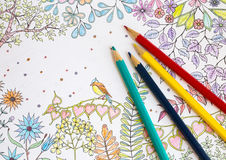 Colorer book - antistress. With colored pencils Stock Photography