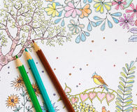 Colorer book - antistress. With colored pencils Royalty Free Stock Photography