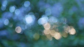 Colores azules, verdes, de oro y otros el consistir en multicolor el fondo almacen de metraje de vídeo