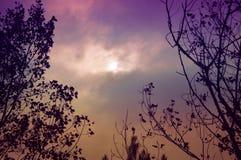 Colores de la caída fotografía de archivo