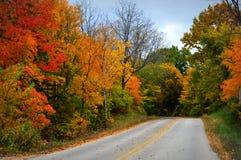 Colores de la caída, camino con las rayas amarillas fotografía de archivo
