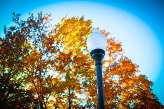Colores de la caída de Iowa Imagen de archivo