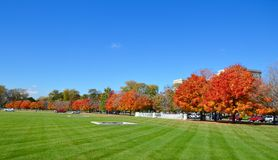 Colores de la caída del campus fotografía de archivo libre de regalías