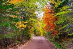 Colores de la caída en Canadá Fotos de archivo libres de regalías