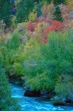 Colores de la caída en el alto país Fotografía de archivo libre de regalías
