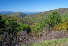 Colores de la caída en el parque nacional -3 de Shenandoah fotografía de archivo