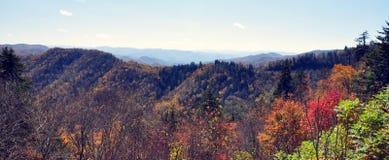 Hojas de la montaña Imagen de archivo