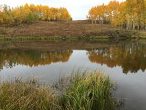 Colores de la caída en las montañas en el lago 2 Fotos de archivo libres de regalías