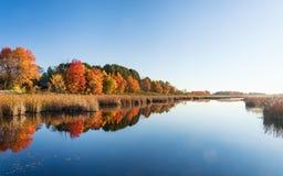 Colores de la caída en Ottawa, Canadá foto de archivo