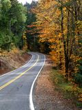 Colores de la caída en un camino de la montaña fotografía de archivo libre de regalías