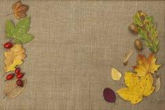 Colores de la caída, hojas coloridas de árboles en fondo marrón del paño Lugar para su texto Imagen de archivo