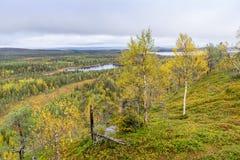 Colores de la caída - tiempo del ruska en Laponia Fotos de archivo