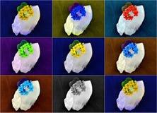 Colores de la flor del cuarzo de la impresión Imagen de archivo