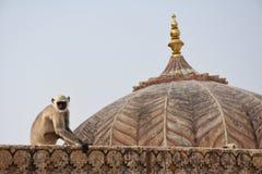 Colores de la India Fotos de archivo