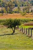 Colores de la línea y de la caída de cerca Imagen de archivo
