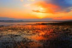 Colores de la mañana Imagenes de archivo