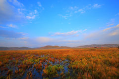 Colores de la mañana foto de archivo