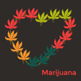Colores de la marijuana de la hoja del corazón diversos en una oscuridad Foto de archivo