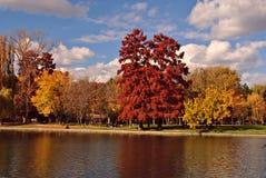 Colores de la naturaleza Imagenes de archivo