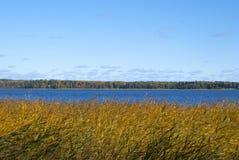 Colores de la naturaleza en el fondo azul del lago Fotografía de archivo
