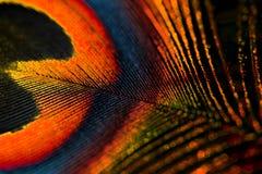 Colores de la pluma Fotos de archivo libres de regalías