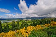 Colores de la primavera en un valle de la montaña Fotografía de archivo libre de regalías
