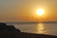 Colores de la puesta del sol Imágenes de archivo libres de regalías