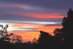 Colores de la puesta del sol en el parque nacional de Tamborine del soporte, Australia Foto de archivo libre de regalías