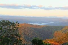 Colores de la salida del sol en el parque nacional de la montaña de Tamborine, Australia Foto de archivo libre de regalías