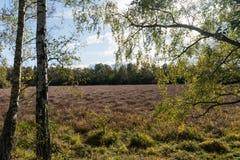 Colores de la temporada de otoño Fotos de archivo