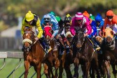 Colores de los jinetes de la carrera de caballos Imagenes de archivo